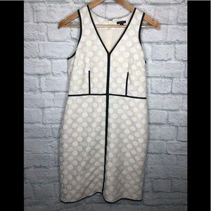 Ann Taylor Beige Sheath Dress Polka Dot